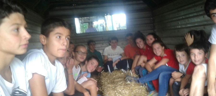 0729-farm5